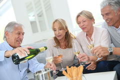 Seniors having toast being cheerful Royalty Free Stock Image