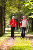 Seniors jogging on a forest road stock images