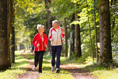 Seniors jogging on a forest road Royalty Free Stock Images