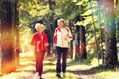 Seniors jogging on a forest road stock photography