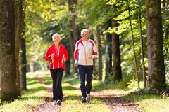 Seniors jogging on a forest road. Senior Couple doing sport outdoors, jogging on a forest road in the autumn stock photos