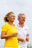 Seniors jogging in the nature royalty free stock images