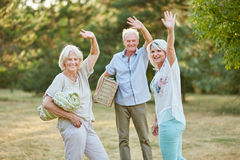 Seniors make a picnnic and wave. Happy group of seniors make a picnnic and wave in summer in the park Royalty Free Stock Photography