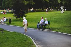 Seniors in the Park Stock Image