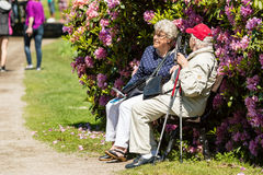 Seniors in park Royalty Free Stock Image