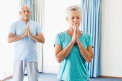 Seniors performing yoga Stock Photos