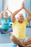 Seniors performing yoga. In a studio Royalty Free Stock Images