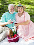 Seniors Picnic Toast. Seniors on a romatic picnic toasting with wine glasses Stock Photos