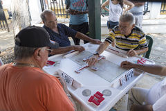 Seniors playing dominoes,Miami, Florida, United States Stock Photo