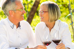 Seniors sitting in vineyard drinking red wine Royalty Free Stock Photo