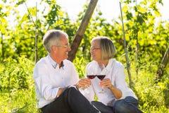 Seniors sitting in vineyard drinking red wine Stock Photos