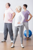 Seniors in sportswear doing workout. Photo of fit seniors in sportswear doing workout stock photo