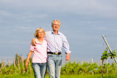 Seniors in summer walking hand in hand Royalty Free Stock Images