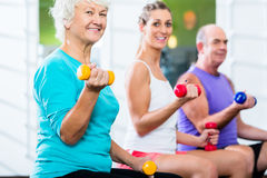 Seniors with trainer in gym at sport lifting barbell. Senior men and women with fitness trainer in gym lifting barbells as sport exercise Royalty Free Stock Photography