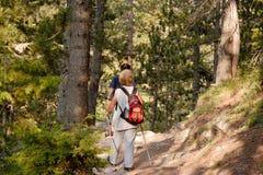 Seniors trekking royalty free stock image