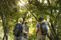 Seniors trekking in a forest Royalty Free Stock Photography