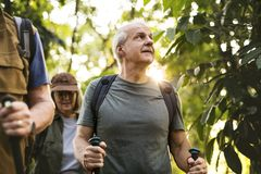 Seniors trekking in a forest Royalty Free Stock Images