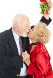 Seniors Under the Mistletoe Royalty Free Stock Photography