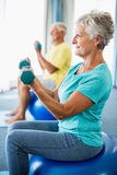 Seniors using exercise ball and weights Royalty Free Stock Image