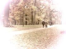 Seniors walking. Old people walking in the park, vintage photo royalty free stock photos