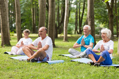 Seniors working out in a park Stock Photo