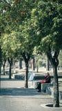 Seniory w parku Zdjęcie Stock