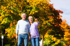 Seniory w ręka w rękę jesień lub spadek odprowadzeniu Fotografia Royalty Free