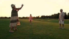 Seniory z wnuczką na zielonej łące zdjęcie wideo