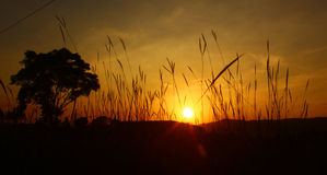Sunset in Ambarawa Stock Images