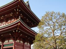 Senjoji Temple and tree. Asakusa, Tokyo. royalty free stock photos