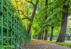 Senken Sie Ansicht des Herbst Sommer-Gartens in St Petersburg Lizenzfreies Stockbild