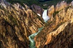 Senken Sie Fälle des Yellowstone vom Künstler Point Lizenzfreies Stockfoto