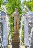 Senken Sie Gärten des Petergof-Palastes in St Petersburg Stockbild