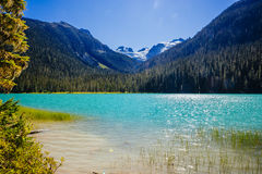 Senken Sie Joffre Lake, Joffre Lake Provincial Park BC Kanada Lizenzfreie Stockfotografie