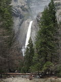 Senken Sie Yosemite Falls Lizenzfreies Stockfoto
