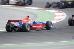 Senna de Bruno Fotografia de Stock