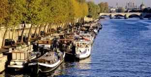 Senna Parigi del fiume Fotografie Stock Libere da Diritti