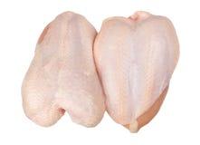 Seno di pollo Immagine Stock