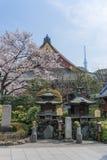 SensÅ  - ji świątynia w Asakusa w wiośnie obrazy stock