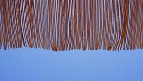 Sensación azul en sus días de fiesta Fotografía de archivo libre de regalías