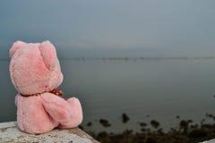 Sensación de la muñeca del oso sola Imagenes de archivo