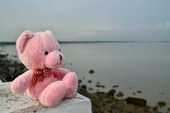 Sensación de la muñeca del oso sola Imágenes de archivo libres de regalías