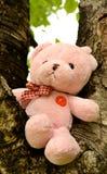 Sensación de la muñeca del oso sola Foto de archivo libre de regalías