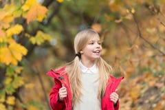 Sensación protegida en este día del otoño Niñez feliz Pequeño niño con las hojas de otoño Niña feliz en otoño imagenes de archivo