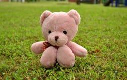 Sensación rosada de la muñeca del oso sola Imágenes de archivo libres de regalías
