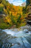 Sensational autumn view Royalty Free Stock Images