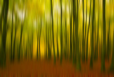 A sense of fall. These vivid fall colors were captured with intentional blur to convey a sense of movement through the forest stock photo