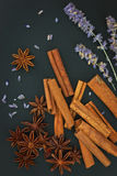 Sense of Spices cinnamon and star anise on black background Stock Photography