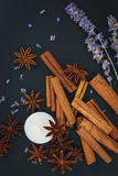 Sense of Spices cinnamon and star anise whit candle on black background Royalty Free Stock Images