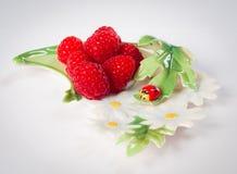 Sense of summer. Fresh raspberry on the porcelain plate with ladybug Royalty Free Stock Photos